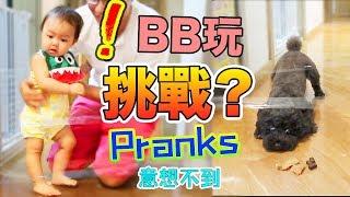 BB玩挑戰 超爆笑 door tape prank what the fluff challenge bottle maze challenge