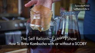 How To Make Kombucha With Or Without A SCOBY - Self Reliant Living #050