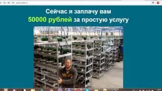 """Виктор Панфилов владелец bitcoin фермы - обманщик? Отзыв от компании """"LookFreedom""""."""