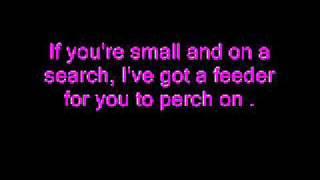 I Like Birds - Eels (With Lyrics on Screen)