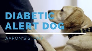 Diabetic Alert Dog Feature: Aaron's Story