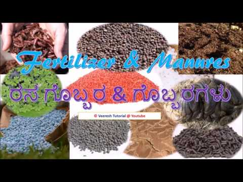 , title : '6.Fertilizer & Manures (ರಸ ಗೊಬ್ಬರ & ಗೊಬ್ಬರಗಳು)-Agriculture Practical Test