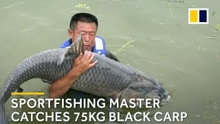China: Sportfishing Master Catches 75kg Black Carp