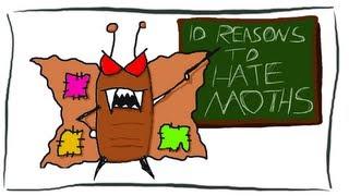 10 Reasons to Hate Moths