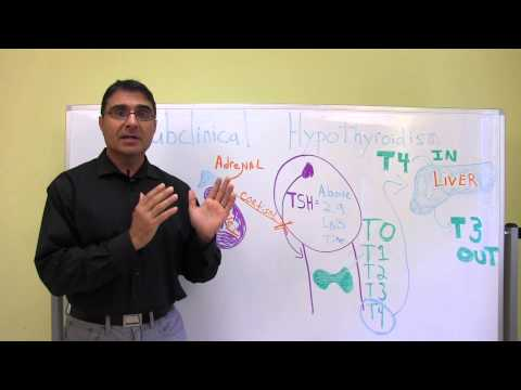 Video Hidden Causes to Thyroid Problems