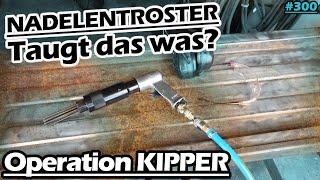 Der billigste Nadelentroster! | Was taugt er? | Kipper-Deichsel instand setzten | Bruns | Mr. Moto