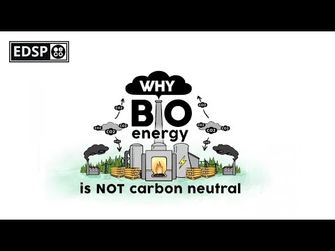 Why Burning Biomass is not Carbon Neutral