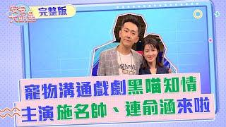 《黑喵知情》主演施名帥、連俞涵來啦!