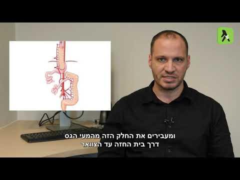 צפו: הכל על כירורגיה אונקולוגית