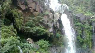 preview picture of video 'Cascade Cormoran'