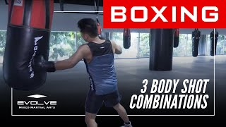 Boxing | 3 Body Shot Combinations | Evolve University