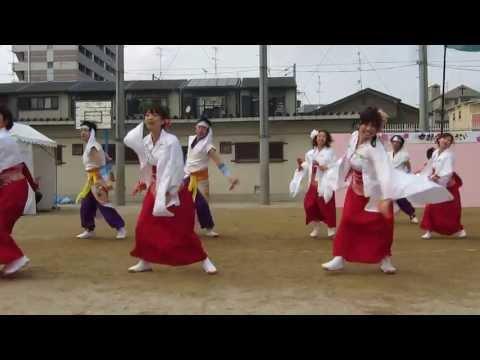 「ひとひら」京都さくらよさこい2013 梅小路小学校会場 2013.0