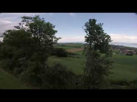 eachine-wizard-x220s--crash-into-a-tree-27k