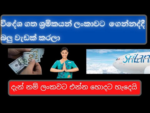 Online Flight Booking Services For Sri Lanka