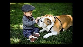 Bulldogs And Babies Compilation