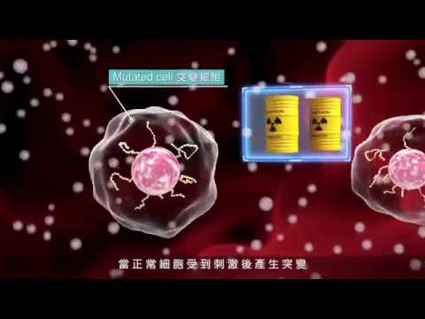 無限可能的起點 細胞治療(免疫細胞)