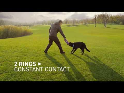 Collar žaislas šunims - žiedas Puller Maxi kaina ir informacija | Žaislai šunims | pigu.lt