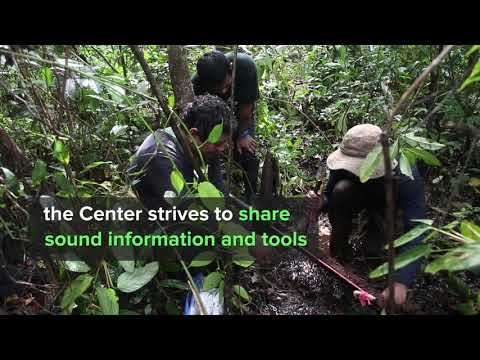 Welcome to the International Tropical Peatlands Center