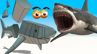 CUBE BUILDER for KIDS (HD) - Build a Great white Shark for Children - AApV