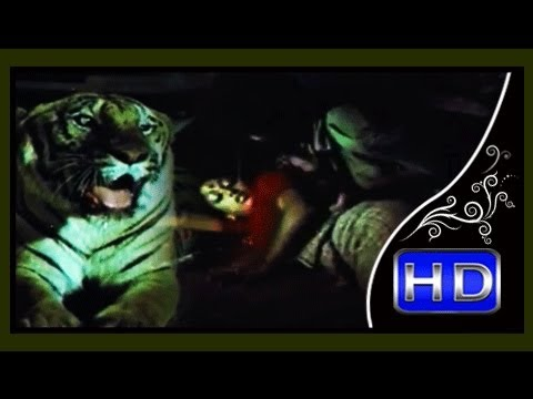 ആരവം | Malayalam Movie Aaravam | Climax Scene