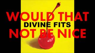Divine Fits - Would That Not Be Nice (2012)