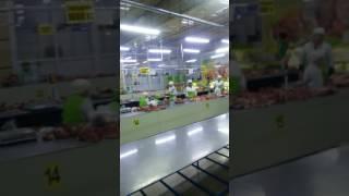 Рынок Астана Артем