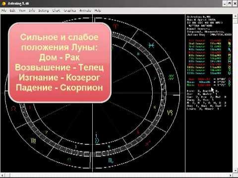 Год рождения 1961 кто по гороскопу