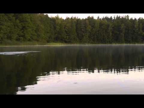 рыбалка на Озере. Псковская область