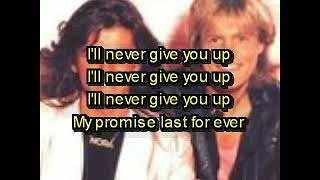 I 'll never give you up * MODERN - TALKING
