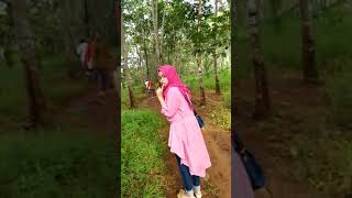 preview picture of video 'Kebun durian'