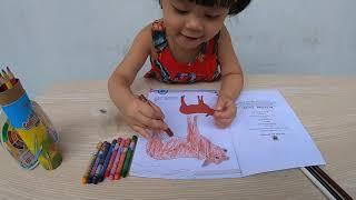 Đồ chơi trẻ em _ Bé tập Tô màu hình con vật _ Bim Bim Channel