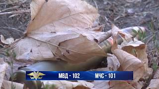 Ответственность за незаконное хранение оружия, взрывчатки и боеприпасов