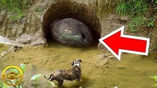 10 การค้นพบทางโบราณคดี ที่เกิดขึ้นด้วยความบังเอิญ (สร้างความฮือฮาทั่วโลก!! )