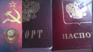 Правильное заполнение Формы П-1 Для Получения Паспорта РФ