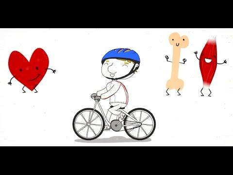 Bó uso da bicicleta