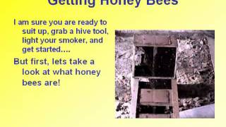 Getting Started in Bee Keeping