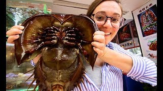 ALIEN SEAFOOD - Chinese Street Food tour in Xiamen, China | BEST Seafood in Southern China