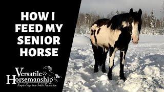 HOW I FEED MY SENIOR HORSE // Versatile Horsemanship