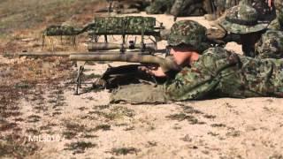 Снайперская винтовка М24  Калибр 7 6251 мм