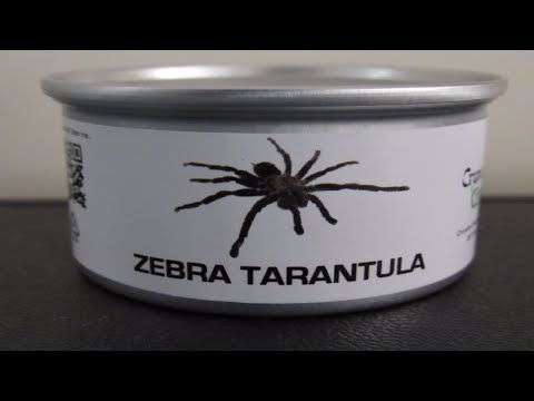 WTF: Dude Eats Spider Out Of A Can?