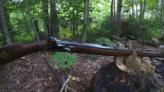 Pedersoli Blue Ridge Flintlock