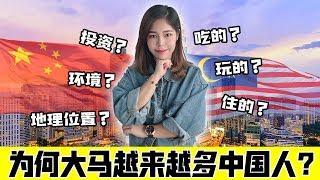 没想到,中国人眼中的大马竟是这样!中国人喜欢马来西亚的原因?【政经10分钟 EP42】