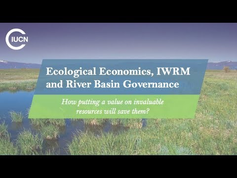 T5 Ecological Economics, IWRM and River Basin Governance