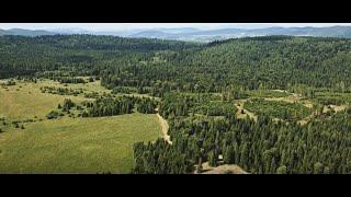 Film do artykułu: Ministerstwo Środowiska w...