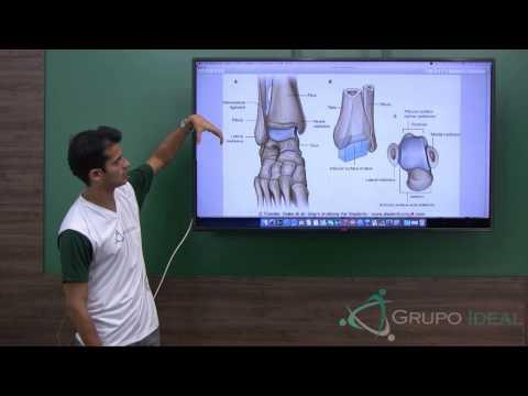 Steroizi pentru dureri articulare