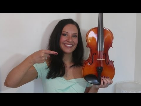 $100 Violin Review + Demo | Mendini MV400