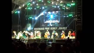 preview picture of video 'JAZMÍN DE LUNA - FESTIVAL LULES CANTA A LA PATRIA 2013'
