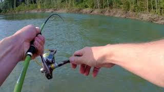 Рыбалка на реке лаба краснодарский край