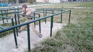 ЕПП лабиринт Белка