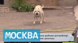 Московскую пенсионерку покусал южноафриканский бурбуль